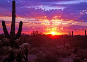 Sunrise-Tucson