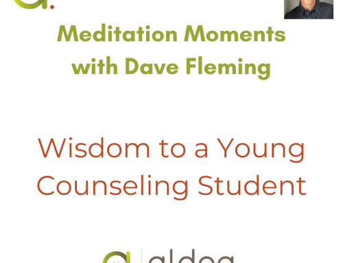 Wisdom to a Young Counseling Student