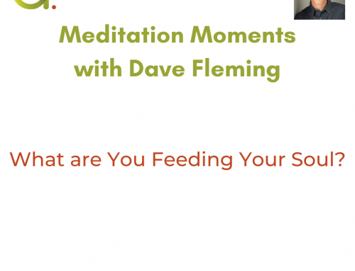 Meditation Moment: What are You Feeding Your Soul?