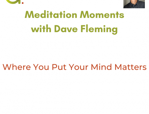 Meditation Moment: Where You Put Your Mind Matters