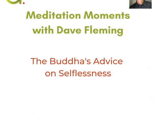 The Buddha's Advice On Selflessness