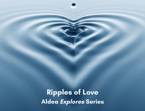 Week Four – Ripples of Love: Warm-Heartedness – Podcast, Reflective Guide and Forum